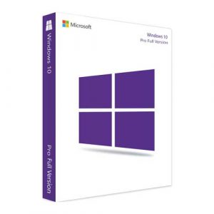 Microsoft Windows 10 Pro Professional License Key Instant Delivery
